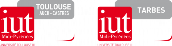 Logo of Moodle - IUT Paul Sabatier